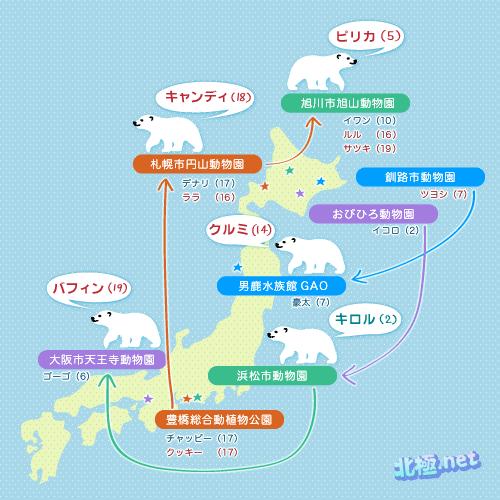 しろくま大移動2011